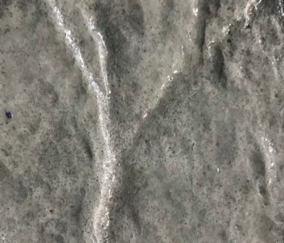 DecoMax Concrete - Stamped Concrete Colors - 06 - Stone Gray